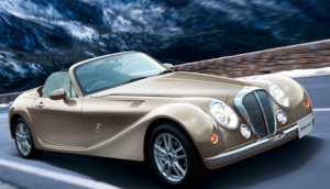 Everything About The Mitsuoka Roadster